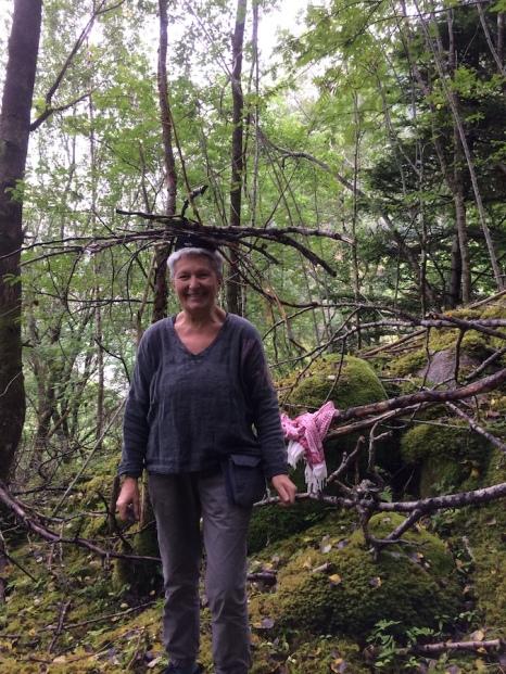 Skog Flørli 120817
